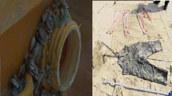Sự trùng hợp giữa x.á.c cô gái m.ấ.t đầu và 25 bánh h.e.r.o.i.n trôi dạt trên biển được phát hiện