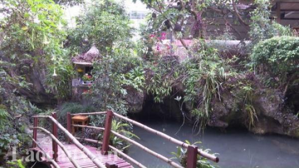 Hấp dẫn Khu sinh thái vườn đá Tả Phìn của chàng trai 8x Lào Cai