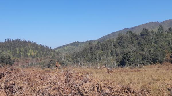 Sa Pa: Xác định 17 vùng trọng điểm cháy rừng
