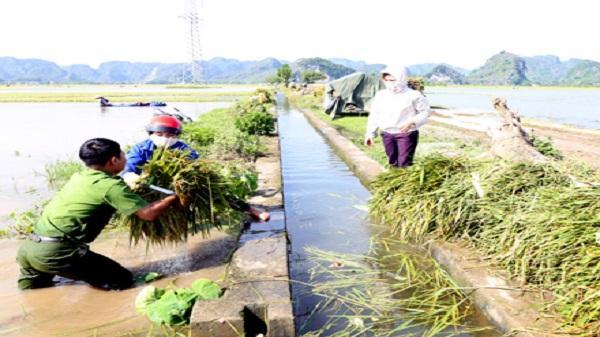 Thành phố Ninh Bình chủ động ứng phó với thiên tai