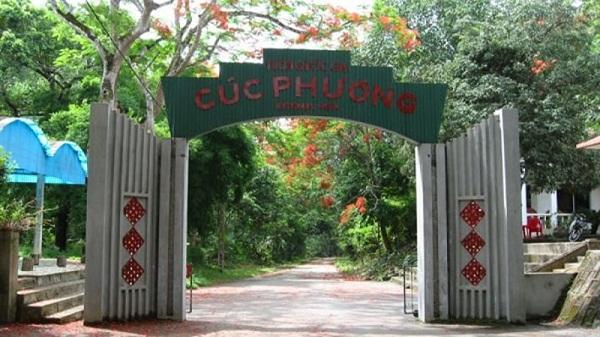 Vườn Quốc gia Cúc Phương - Điểm điến không thể bỏ lỡ trong mùa hè này