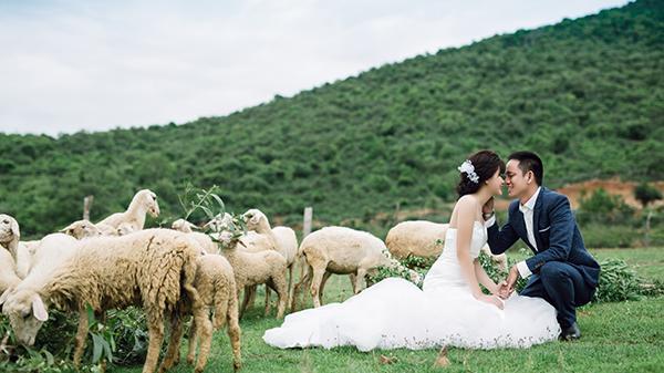"""MÊ MẨN bộ ảnh ở Ninh Thuận của cặp đôi giáo viên tiếng Anh """"chịu chơi"""" chi nửa tỷ chụp ảnh cưới"""