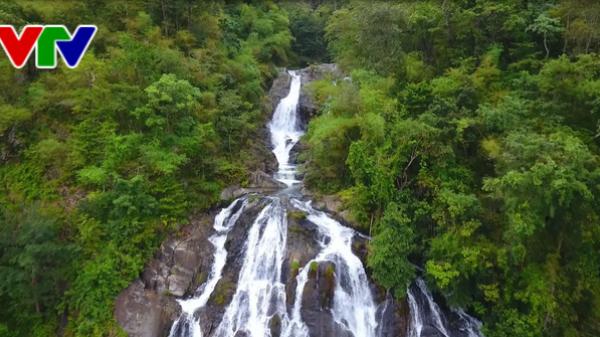 Phát hiện hệ thống thác kỳ vĩ trong rừng nguyên sinh ở Ninh Thuận