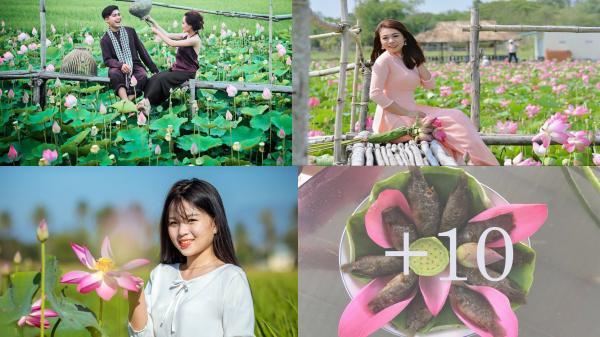 ĐẸP NGỠ NGÀNG với CÁNH ĐỒNG SEN THÁP MƯỜI ngay tại Ninh Thuận