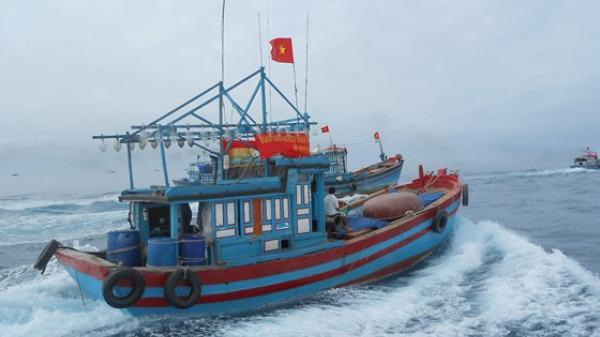 Ban chỉ đạo Trung ương đề nghị Bộ Ngoại giao làm việc với các nước hỗ trợ ngư dân tránh bão
