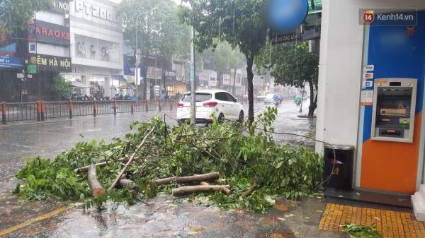 Cập nhật về bão số 9: Sài Gòn mưa trắng trời khiến cây xanh ngã đổ, Vũng Tàu vẫn đang oằn mình chống bão