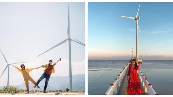 4 cánh đồng quạt gió ở Việt Nam được hội mê sống ảo săn lùng