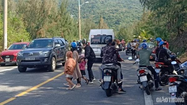 Người dân, du khách đứng giữa đường xem đàn khỉ ở rừng Sơn Trà