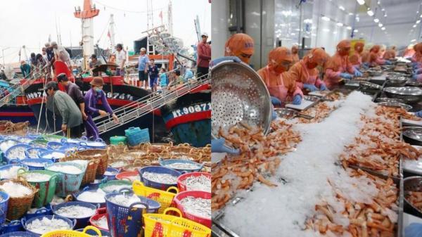 Hình ảnh về một Ninh Thuận ngày càng đổi thay, giàu mạnh hơn