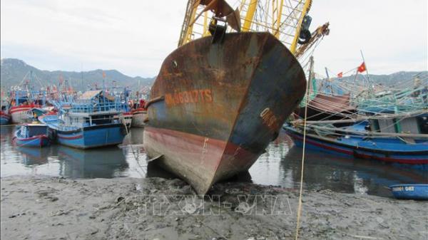Ninh Thuận: Ngư dân chật vật vì cảng cá bị bồi lấp.
