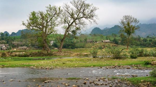 Bản Ú - NGÔI LÀNG ĐẸP NHƯ TRANH VẼ ở Phú Thọ, ai lỡ lướt qua sẽ TIẾC HÙI HỤI