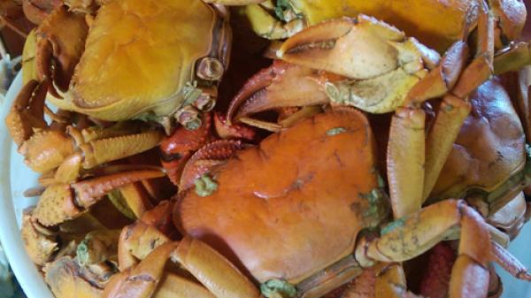 Cua suối - món ăn nhất định phải thử khi đến Xuân Sơn