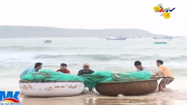 """Ngư dân Phú Yên bất ngờ được """"lộc biển"""" tôm hùm giống khiến nhiều người vui Tết!"""