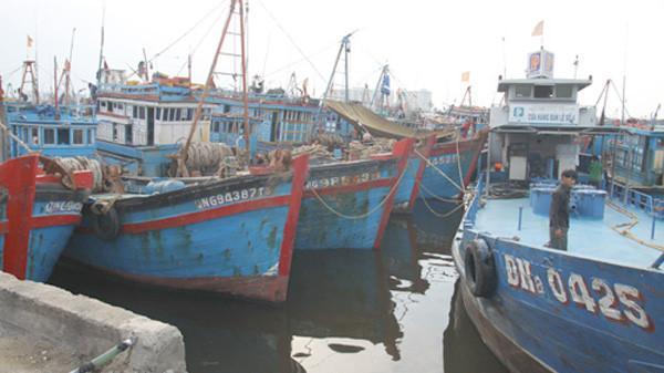 Phú Yên:  Đóng Bến cá phường 6 sau gần 30 năm hoạt động