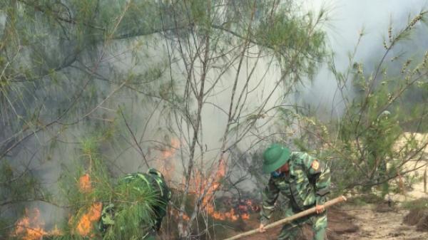 Phú Yên: Đồn Biên phòng Xuân Thịnh tham gia chữa cháy rừng phòng hộ