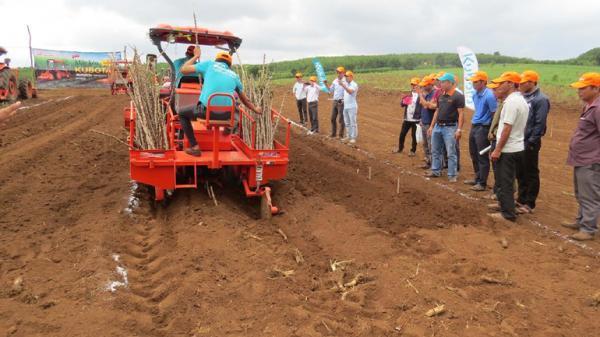 Hiệu quả từ ứng dụng cơ giới hóa vào trồng mía tại Phú Yên