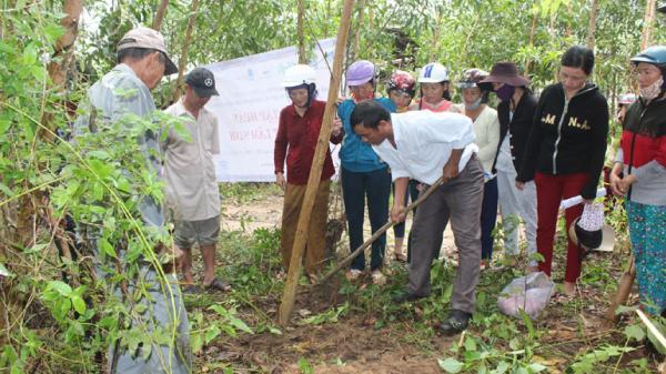 Trồng rừng sản xuất: Nâng cao giá trị kinh tế nhờ tái cơ cấu lâm nghiệp tại Phú Yên