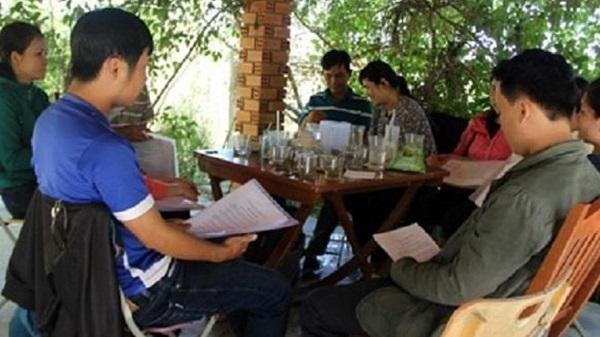 Phú Yên: Bị cho nghỉ việc, 12 giáo viên khởi kiện trưởng phòng giáo dục đào tạo huyện
