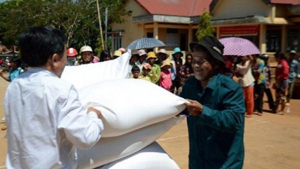 Phú Yên: Phân bổ 500 tấn gạo Chính phủ hỗ trợ người dân trong tỉnh