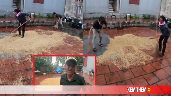 Con trai Bà Tân Vlog gây phẫn nộ khi để nguyên sân thóc ướt mưa quay clip: Phá hoại, đùa trên nỗi đau của người khác