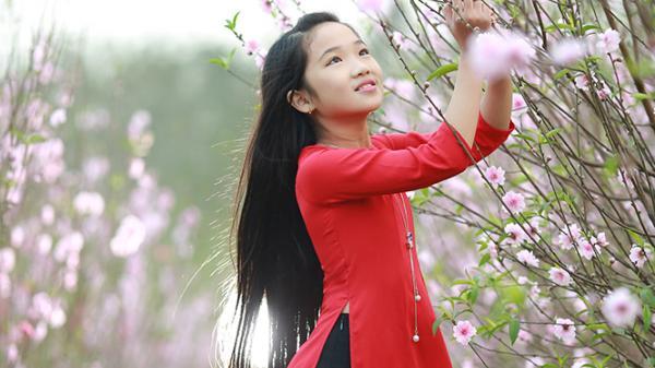 Về Lý Trạch ngắm hoa đào rực rỡ