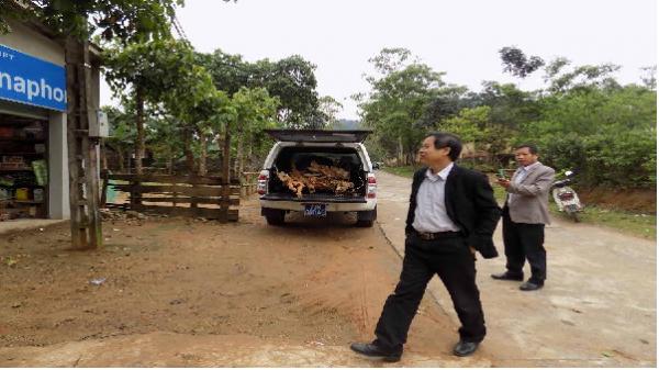 Chối tội không xong, Giám đốc TTYT đã thừa nhận dùng xe công chở gỗ lậu