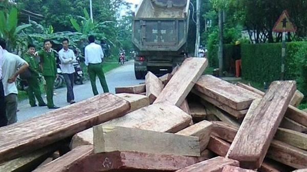 Bị phát hiện, tài xế xe ben đổ hơn 8m3 gỗ lậu xuống đường