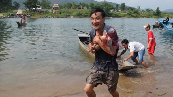 Về Quảng Bình xem hội thi cực lạ: Háo hức tìm cá trắm to, 'body' đẹp