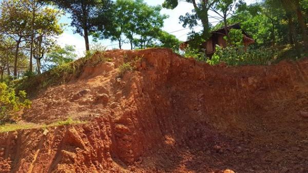 Quảng Bình: Bị 36 tháng tù treo vẫn ngang nhiên đào đất đồi bán trái phép