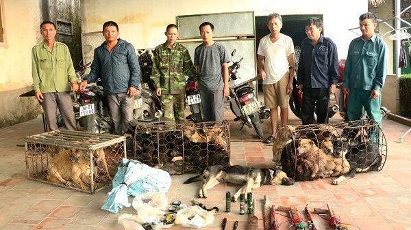 Vũ khí rợn người của băng trộm chó vừa bị bắt