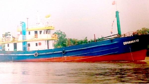 Ngư dân Quảng Bình trúng đậm mẻ cá năm tấn, thu 600 triệu đồng