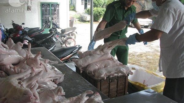 Xử phạt nghiêm đối với hành vi ngâm, tẩm hóa chất vào sản phẩm động vật