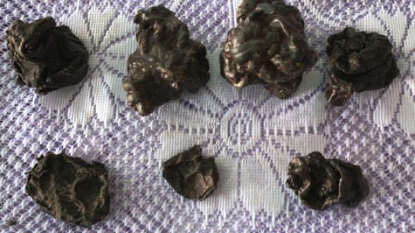 """Quảng Bình: Mổ dê, phát hiện 7 vật thể lạ nghi là """"dương bảo"""" quý hiếm"""