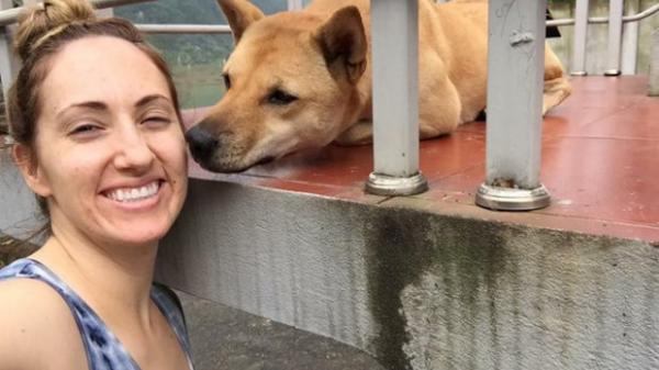 Người phụ nữ Mỹ treo thưởng 50 triệu cho ai tìm được chú chó mất tích ở Quảng Bình