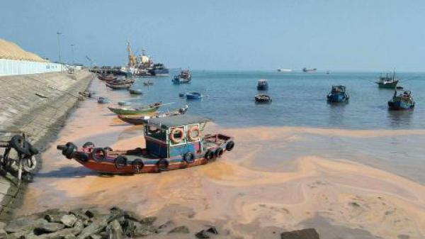 Nhấn chìm 2,5 triệu m3 bùn thải xuống biển: Thận trọng...
