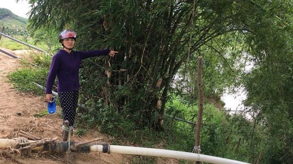 """Quảng Bình: Doanh nghiệp thuê đất của dân rồi """"biến thành"""" đất mình?"""