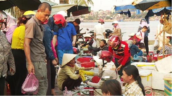 Ngư dân Quảng Bình ào ạt ra khơi, chợ cá Đồng Hới nhộn nhịp trở lại