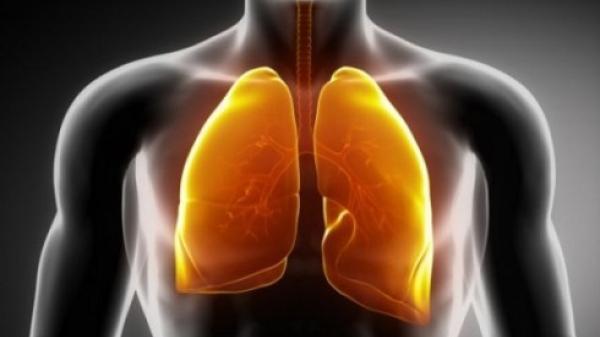 """5 thực phẩm được ví là """"máy hút bụi"""" cho phổi: Thường xuyên ăn, phổi sẽ được dọn sạch sẽ"""