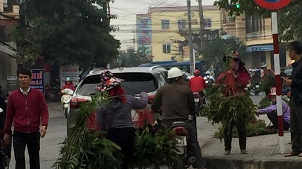Quảng Bình: Cần kiểm tra nguồn gốc phong lan được đưa đi bán dạo