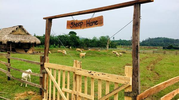 Bốn chàng trai ở Bố Trạch đã làm thay đổi mảnh đất Đồng Soi