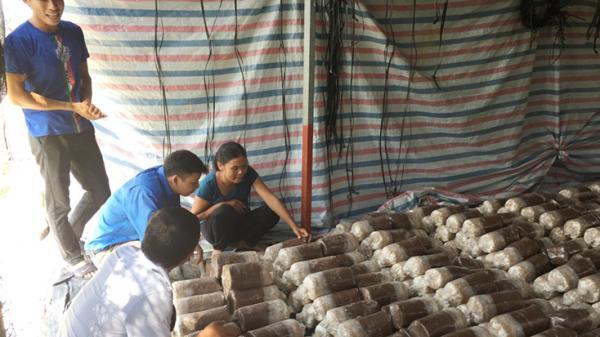 Thanh niên Quảng Trạch với làm giàu không khó