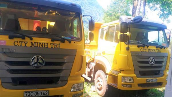 Quảng Bình: Xử ph ạt lái xe vận chuyển phong lan tr ái phép