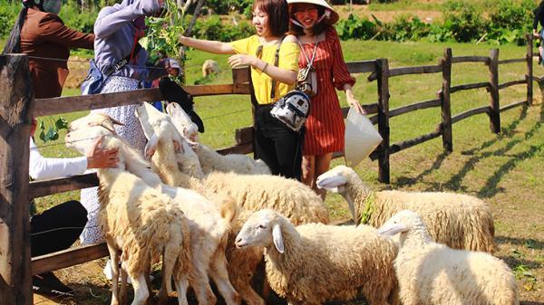 Quảng Bình thu hút khách du lịch sớm với những điểm tham quan mới, lạ