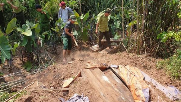 """Phát hiện 3 hầm gỗ mun """"khủng"""" ở biên giới Thượng Trạch"""