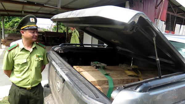 Bố Trạch: B ắt giữ ô tô gắn biển số giả vận chuyển gỗ l ậu
