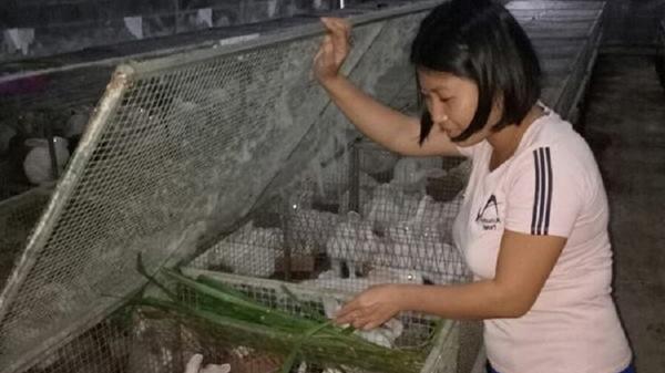 Cô gái trẻ bỏ việc ở công ty nước ngoài về quê hương Quảng Bình làm giàu