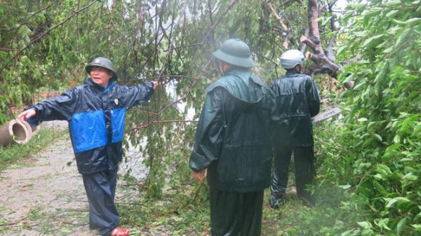 Bão số 10 gây thiệt hại nặng tại huyện Minh Hóa