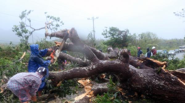 Tuyên Hoá: Linh động, sáng tạo trong khắc phục hậu quả bão