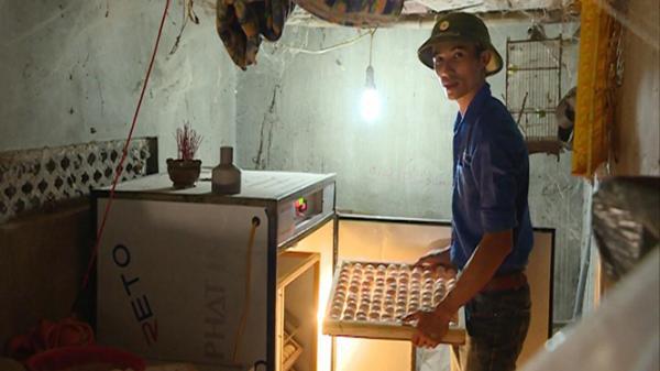 Hai chàng trai huyện Quảng Trạch (Quảng Bình) bỏ phố về làng, mở trang trại làm giàu từ mảnh đất quê hương