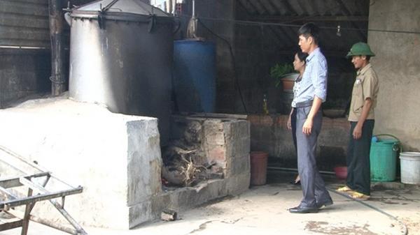 Triển vọng từ sản xuất tinh dầu sả
